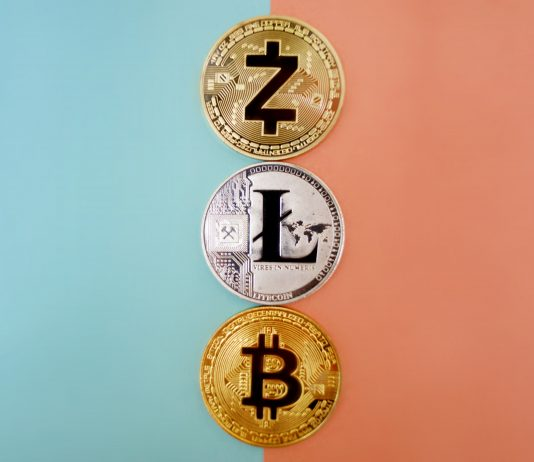 bitcoin or altcoin what to trade